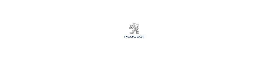Kit déco voitures de rallye Peugeot