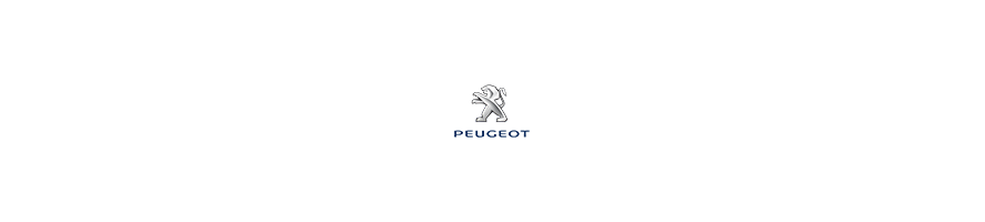 Peugeot Sport Replica